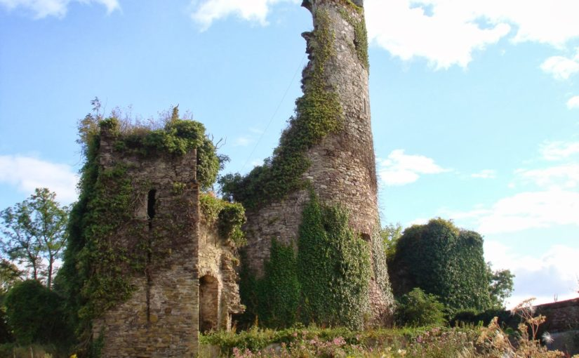 Sowing Seeds of Interdisciplinary Work: Relict Plants at Medieval Castles